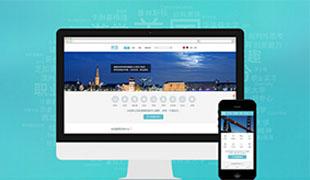 经济基础型网站